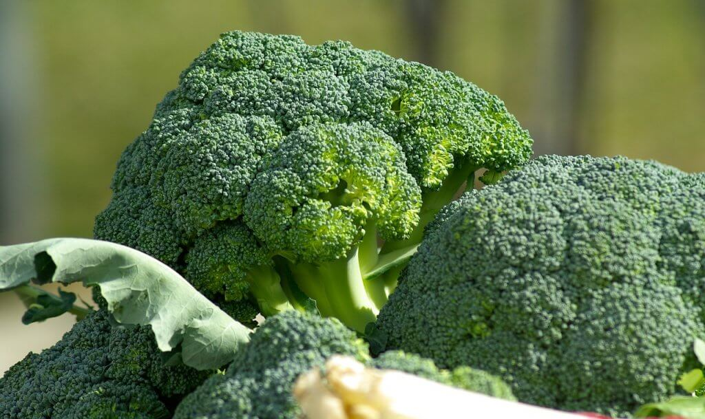 Broccoli | Brain Food