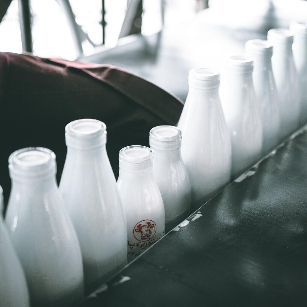 raw-milk-organic-zebra-organics